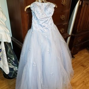 Dresses & Skirts - Beautifully beaded prom/ pageant dress